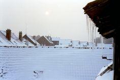 Steeno sous la neige