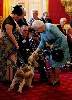 Pin for Later: Les Moments les Plus – et les Moins – Royaux de la Reine Elizabeth II Moment Moins Royal: Quand Elle Se Baisse Pour Caresser un Chien