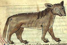 Crocotta - Wikipedia, the free encyclopedia