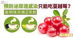 作法:將中藥材用500cc熱水,燜約五分鐘,加入冰糖,即可代茶飲用。