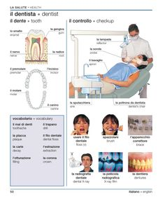 Learning Italian - Dentist