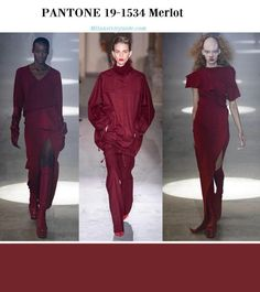 PANTONE 19-1534 Merlot fall winter 2019 2020-min