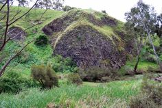Rosette Rock, Organ Pipes National Park, Victoria, Australia. A large outcrop of basalt with a radial array of columns resembling the spokes of a giant wheel, it was formed by the radial cooling of a pocket of lava, probably in a spherical cave formed from an earlier lava flow.