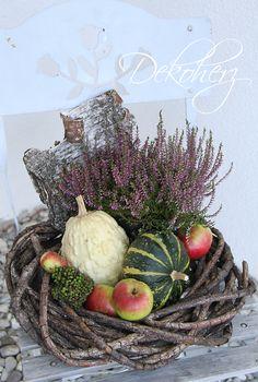 Herbst: Zierkürbisse und Heidekraut