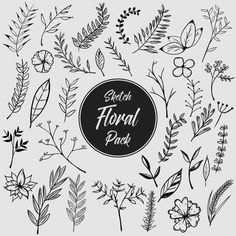 Hand drawn floral pack Free Vector
