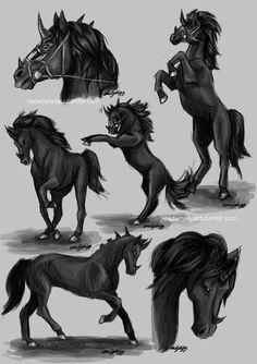 Asoge Sketchdump by RedWryvenArt on DeviantArt Cute Fantasy Creatures, Mythical Creatures Art, Mythological Creatures, Magical Creatures, Creature Drawings, Horse Drawings, Animal Drawings, Fantasy Kunst, Fantasy Art