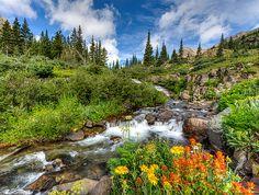Yankee Boy Basin, Ouray, Colorado