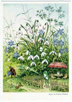 "Fritz Baumgarten ""Regen aus heiterem Himmel"" Wiese postacard, Frosch, ca. 1950 Künstler-AK v."
