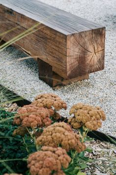 ABC TV Dream Gardens — Kathleen Murphy Landscape Design How to Liven Up Your Home With Breathtaking Landscaping Designs WITHOUT Hiring Costly Professional Landscape Designers.