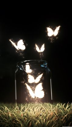 Fantasy Butterfly Jar Android Wallpaper iPhone X Wallpaper 114841859227545962 Scenery Wallpaper, Cute Wallpaper Backgrounds, Pretty Wallpapers, Live Wallpapers, Aesthetic Iphone Wallpaper, Phone Backgrounds, Backgrounds Free, Cute Galaxy Wallpaper, Butterfly Wallpaper Iphone