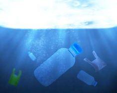 Планета Земля и Человек: Почему морские животные едят пластик?