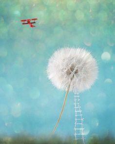 Fly Away Escape Wish Dream Freedom Travel getaway wander Red Vintage Airplane bi-plane Photograph wall art Fine Art Photo, Photo Art, Dandelion Tattoo Meaning, Freedom Travel, Bugs, Vintage Airplanes, Color Studies, Online Shopping Sites, Surreal Art
