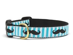 Mustache Dog Collar by Up Country Find it at Fancy Paws,LLC!