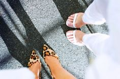 leopard & white
