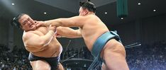 How the Media Shaped Sumō's Modern Traditions Martial Arts, Sumo, Wrestling, Traditional, Modern, Lucha Libre, Martial Art, Trendy Tree, Combat Sport