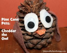 Nature Walk Craft: Pine Cone Pets - These pets are the best ever and not to mention cute!