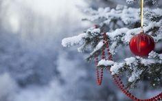 Обои счастливый новый год, дерево, новый год, праздник, снег, рождество Обои, игрушки