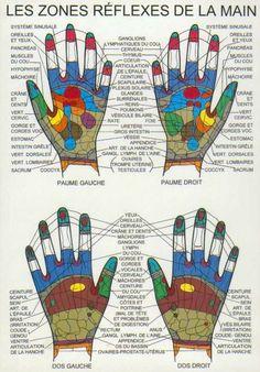 Carte réflexologie mains