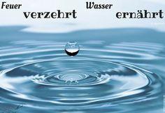 Tipps, wie man Wasser sparen kann http://lelife.de/2016/03/tipps-wie-man-wasser-sparen-kann/
