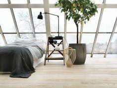 Houseplant display Ideas more (1)