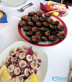 Raw seafood  http://www.polignanomadeinlove.com #polignanomadeinlove #ilovepolignanoamare #vieniamangiareinpuglia #madeinitaly #WeAreInPuglia #polignanolovers