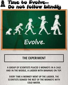 Time to Evolve…..Do not follow blindly- very interesting experiment.