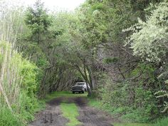 Driveway on Block Island by mattrazzo, via Flickr