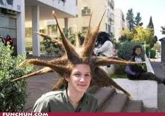 Image result for funny hairstyles for girls Funny Hairstyles, Girl Hairstyles, Crazy Hair, Hair Humor, Christmas Ornaments, Holiday Decor, Hair Styles, Girls, Image