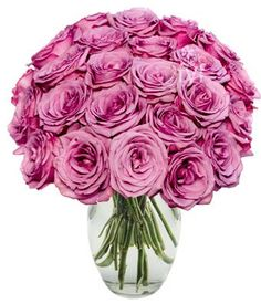 Flowers - Two Dozen Purple Roses (FRE... $44.99 #bestseller