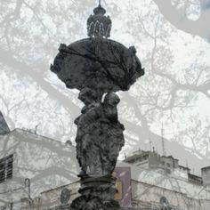 imagem de / image by Carolina Falcão