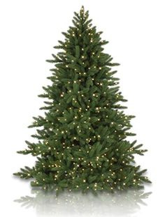 Castle Peak Pine Artificial Christmas Tree   Balsam Hill
