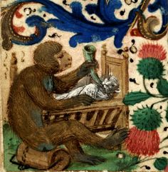Monkey with kitten, Ms. 502. Bibliothèque Mazarine