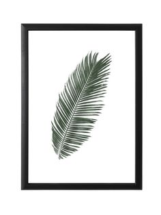 Black Wooden Frame with GlassWall hangableDimensions: 30 cm x 45 cm Wooden Frames, Wooden, Framed Prints, Tropical Leaves, Palm, Wall, Glass, Glass Wall, Frame