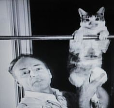 George Balanchine, with Mourka - how to teach ballet to your cat #2 (from book by Tanaquil LeClerc  and photographer Martha Swope) Need a better scan!