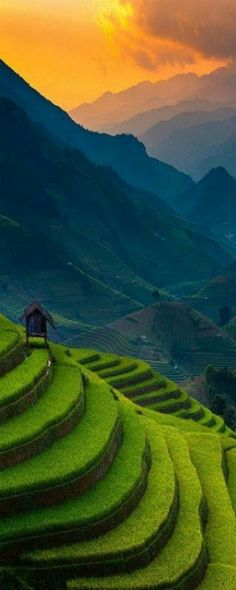 #banaue #phillippines #rice #terrace  #world #nature #water #waterfalls #awesome #super #ocean #mist #sea #bluesea #fantastic #hd #highquality #mobile #mobilewallpapers #smartphone #android