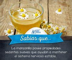 #Sabíasque #remedios #naturales #manzanilla #HuevoSanJuanMX