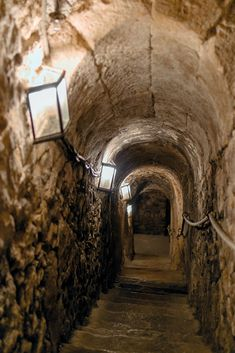 This is most likely what the cellar Esther sat in after she took all of her sleeping pills. This is also where her mother and EMTs found her. Pub Design, Rustic Home Design, House Design, Chalet Design, Wine In The Woods, Wine Cellar Design, Root Cellar, Door Murals, Secret Rooms