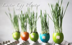 DIY | Colorful Easter Egg Planters