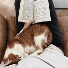 Nap time and reading time