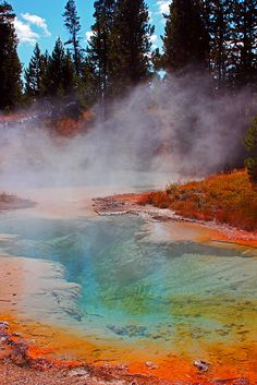 Visit the Yellowstone Geyser Basin. It is amazing to see something so unspoiled in all the vibrant colors of nature. Wyoming, Oh The Places You'll Go, Places To Travel, Places To Visit, Parque Natural, Image Nature, Photos Voyages, Yellowstone National Park, Vacation Spots