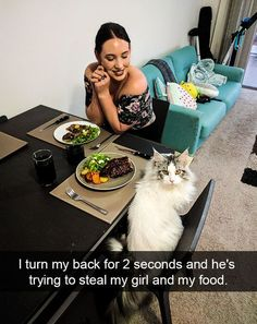 32 Funny Animal Pictures – Funnyfoto | Funny Pictures - Videos - Gifs - Page 4
