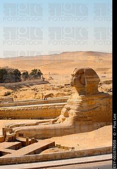 Egypt! Trip of a lifetime coming up in Sept   So excited!