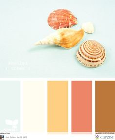 Coastal color palette!  Virtual Properties loves these Summer colors!
