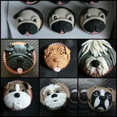 Doggie cupcakes - Cake by For the love of cake (Laylah Moore)