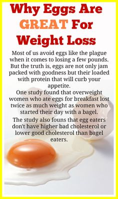 So many people believe that eggs are bad for them and are the last thing you should be eating while on a diet, But think again... If you really want to lose weight, avoid all the usual weight loss nonsense and finally start turning things around, CLICK HERE for my FREE short report on how to 'Lose 4 lbs In 7 Days Without Joining A Gym Or Starving Yourself. IT'S FREE, think you'll enjoy it... http://www.weightlosswithrob.com/free-special-report/