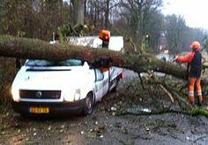 5-Dec-2013 20:14 - TIENTAL MELDINGEN OVER STORMSCHADE OVERIJSSEL. De brandweer in Overijssel heeft vandaag 'slechts' een tiental meldingen over stormschade binnengekregen. Vaak betrof het meldingen van omgewaaide bomen en gevallen takken.