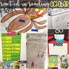 Spider Lessons and Activities for the Classroom Reading Lessons, Reading Strategies, Reading Activities, Classroom Charts, Nonfiction Text Features, Thematic Units, Reading Workshop, Autumn Activities, Anchor Charts