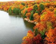 perfect fall colors