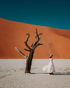 Going on a Namibia road trip is one of the best ways to explore the country. Here's everything you need to know about planning an epic trip!