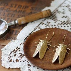 Cicada Metamorphosis Earrings by Christine Domanic